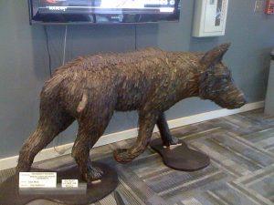 Prowling wolf sculpture