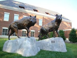 A pair of bronze wolf sculptures on the lookout