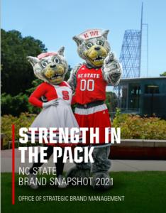 Brand Snapshot Cover